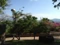 Смотровая площадка Ранг Хилл